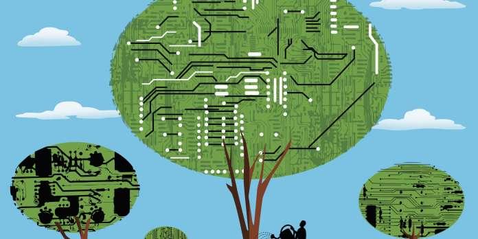 Compétences numériques : l'écart se creuse