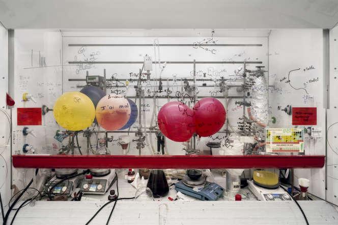 «Chemistry Fume Cabinet, The University of Edinburgh, 2010», de Thomas Struth.