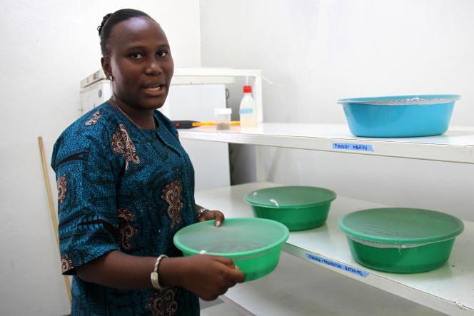 La chercheuse Claire Sangba-Kembi à l'Institut Pasteur de Bangui, en Centrafrique, en octobre 2019.