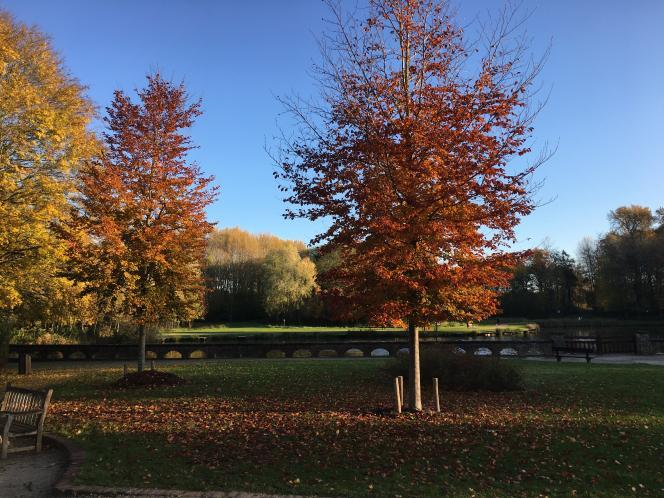 Le parc de Zonnebeke, l'actuelle commune flamande regroupée avec celle de Passchendaele.
