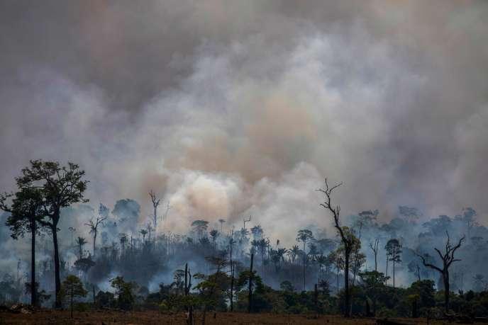 Une épaisse fumée se dégage le 27 août 2019 à Altamira, dans l'Etat brésilien de Para, qui, à lui seul, a représenté 44 % de la déforestation totale de l'Amazonie entre août 2018 et juillet 2019.