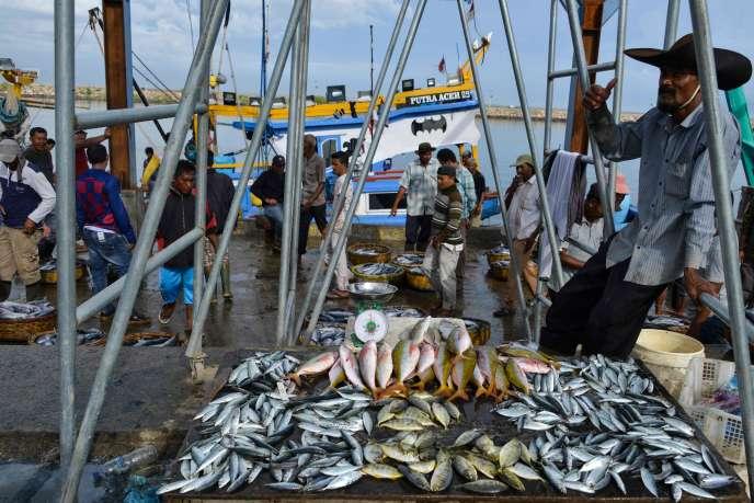 Dans le port de Banda Aceh (Indonésie), le 28 novembre 2019.