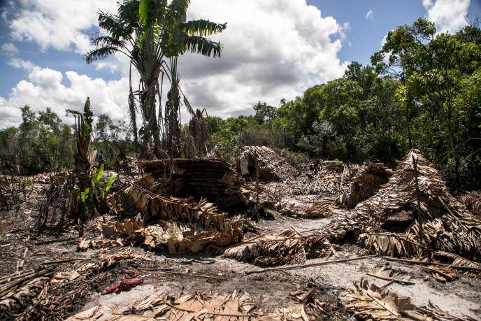 Villages détruits de bûcherons illégaux près du village deManambato, dans le nord de Madagascar, en mars 2019.