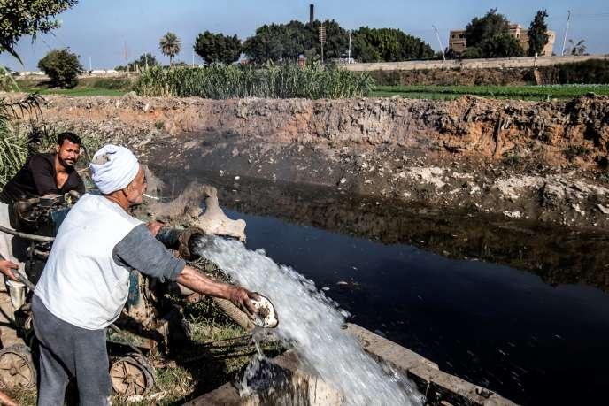 Mohamed Omar, un cultivateur égyptien de 65ans, irrigue son champ avec l'eau d'un canal alimenté par le Nil, à Baharmis, le 1erdécembre 2019.