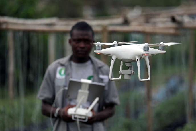 Un membre de la start-up ivoirienne Investiv Group fait décoller un drone sur une exploitation de tomates au nord d'Abidjan, en avril 2019.