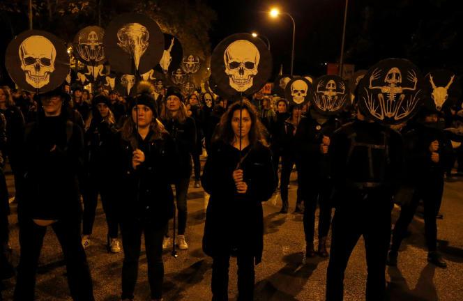 Dans le cortège de la marche pour le climat, à Madrid, où se tient la COP25.