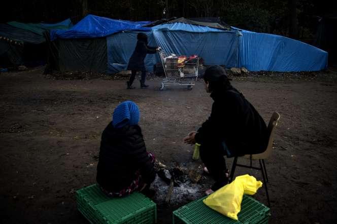 Tentes de réfugiés et migrants en forêt de Saint-Germain-en-Laye, le 2 décembre 2019.