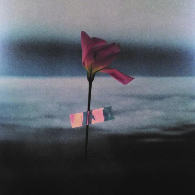 Pochette de l'album «Paralanguage», de Will Samson.