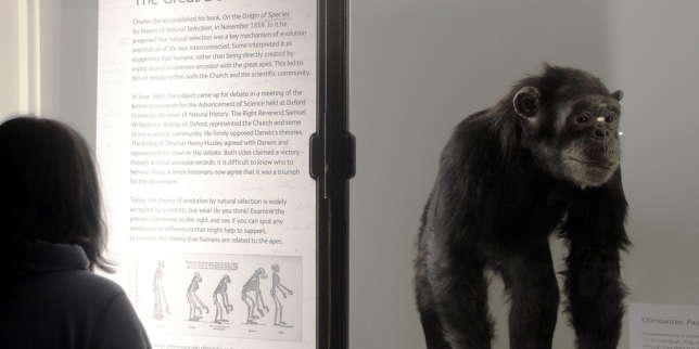 Des musées de sciences contre la science ?