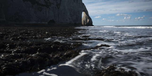PlanB: les côtes françaises sont-elles prêtes à affronter la montée des eaux?