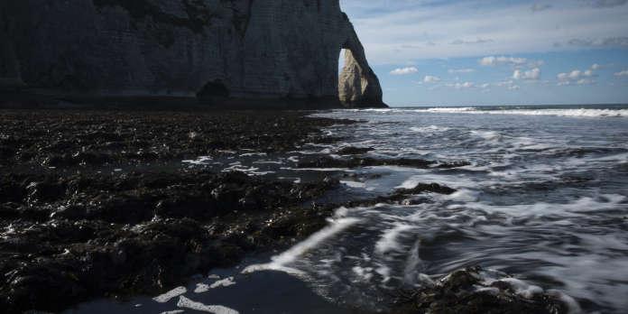 Plan B : les côtes françaises sont-elles prêtes à affronter la montée des eaux ?