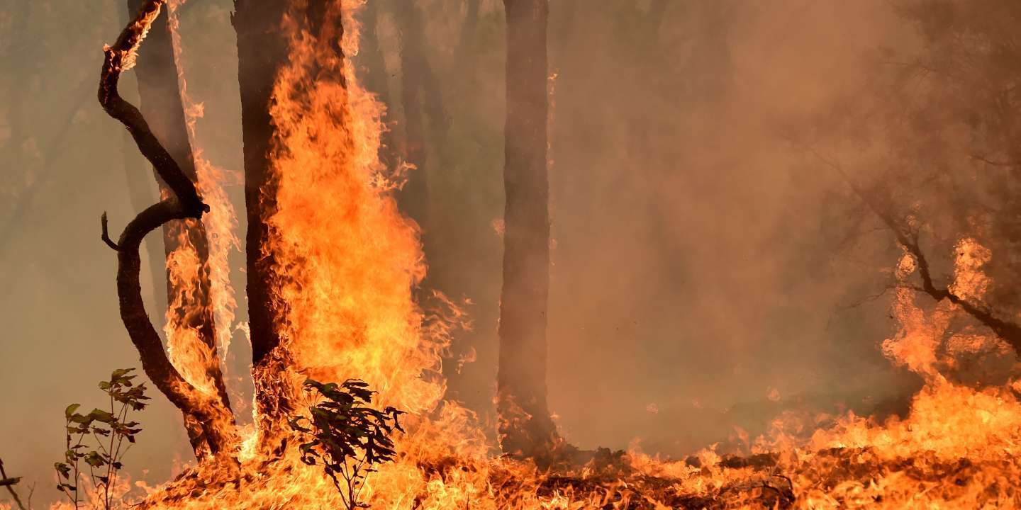 A bushfire burns on a property in Balmoral, 150 kilometres southwest of Sydney on December 19, 2019. A state of emergency was declared in Australia's most populated region on December 19, as a record heat wave fanned unprecedented bushfires. / AFP / PETER PARKS