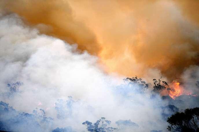 Un incendie dans la région de Spencer, à quelques centaines de kilomètres de Sydney, le 9 décembre.