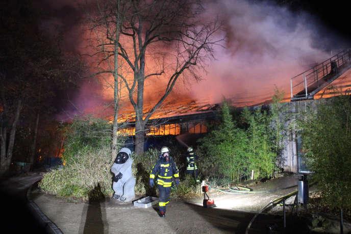 Des pompiers devantla « maison des singes » en feu, au zoo de Krefeld, le 1er janvier.