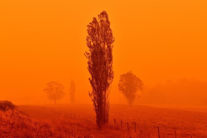 Les feux de brousse à Bemboka, dans l'Etat australien de la Nouvelle-Galles du Sud, rougissent le ciel, le 5 janvier.