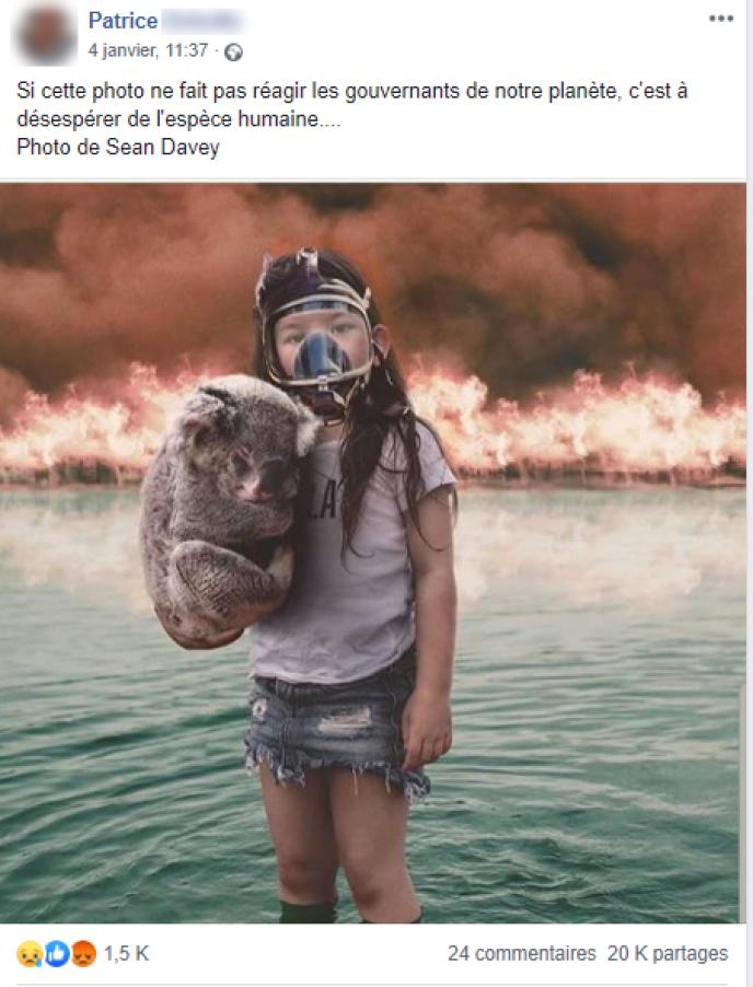 Capture d'écran d'un message sur Facebook illustré par la photo de la petite fille au koala.