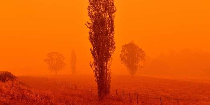 La fumée des incendies australiens atteint le Chili et l'Argentine