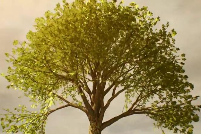 Le chêne de Grunewald, forêt des alentours de Berlin, en Allemagne, a planté ses premières racines dans le sol en 1543.