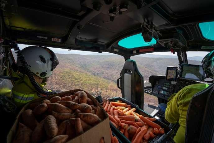 Les rangers du Willemi National Park organisent une action de largage de nourriture, le 10 janvier.
