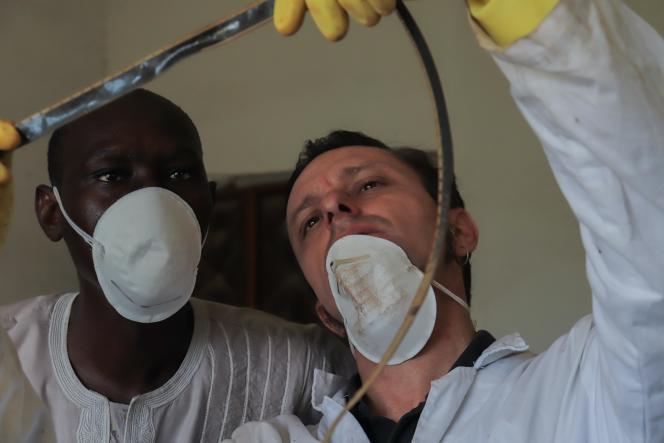 Le chercheur italien Marco Lena avec un laborantin sénégalais ont examiné une à une les 5900 bobines de pellicule en perdition. Parmi elles, 400 films de 16 mm d'actualités sénégalaises et des documentaires pourront être sauvés.