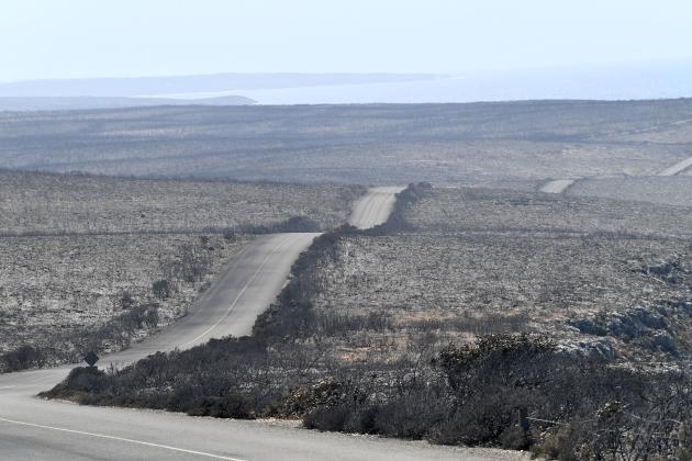 L'île Kangourou, le 7 janvier.