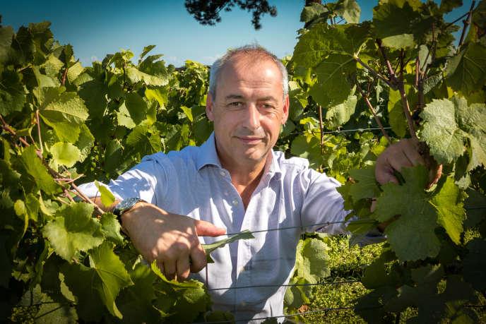 Albéric Bichot, en 2016, dans la vigne du clos des Ursulines, au Domaine du Pavillon, à Pommard.