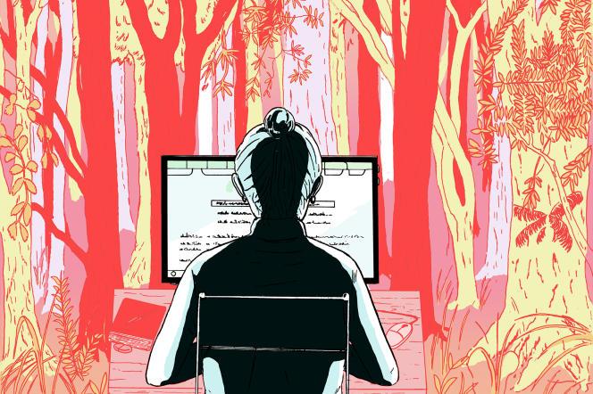 La promesse d'Ecosia: en utilisant son moteur de recherche, les internautes contribuent à la plantation d'arbres.