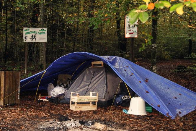 L'une des tentes utilisées par les trafiquants de cèpes, dans la commune de Fougerolles-Saint-Valbert (Haute-Saône), le 20 octobre.