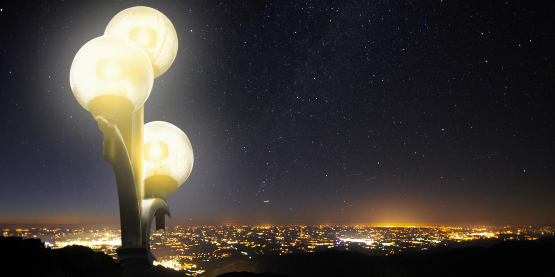 Vidéo. Pourquoi la lumière artificielle menace-t-elle les animaux?