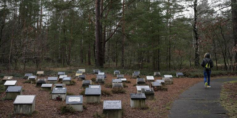 23.01.2020 Bergen-Belsen, Germany   Memorial Stones and visitor. - Bergen-Belsen Memorial / Cemetery Historical Grounds of the Camp Photo:©Irving Villegas