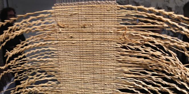 « Graminées sauvages» (2008, détail), de Marie-Noëlle Fontan, partie d'un triptyque de tissages de fils et de graminées sauvages présenté au Musée Jean-Lurçat et de la tapisserie contemporaine d'Angers.