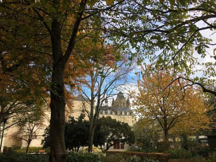Le jardin du Musée des beaux-arts d'Angers.