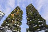 «La nature peut-elle humaniser la ville?» Une conférence Le Monde Cities et «Le Temps» àGenève