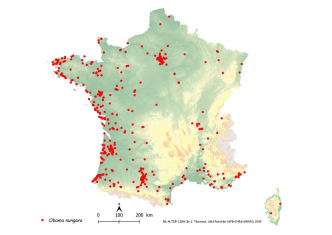 Carte de signalements d'«Obama nungara» en France métropolitaine sur la période 2013-2018.