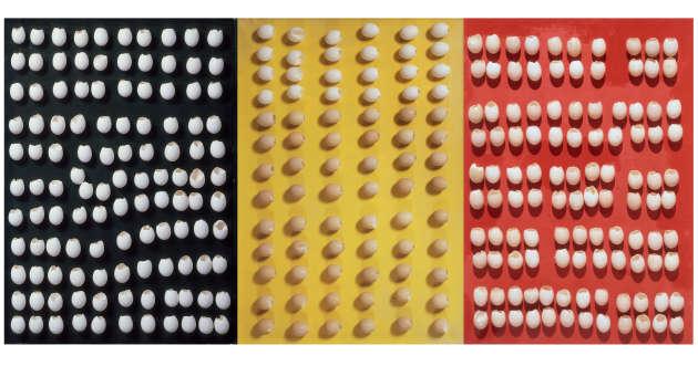 «Triptyque», de Marcel Broodthaers,1966. Peintures sur toile et coquilles d'œufs, 100 x 70 x 8 cm.