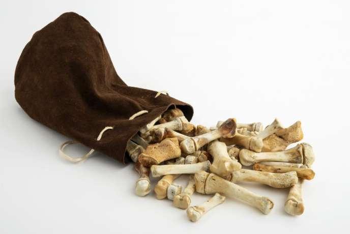 Le casse-tête inuit, fait d'os et de peau de phoque.