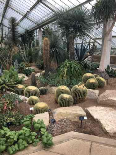 Les serres contemporaines du Princess of Wales Conservatory, à Kew, qui s'étendent sur une surface de 4500m2, abritent dix zones climatiques reconstituées, depuis les déserts froids jusqu'aux montagnes tropicales ou aux forêts humides.