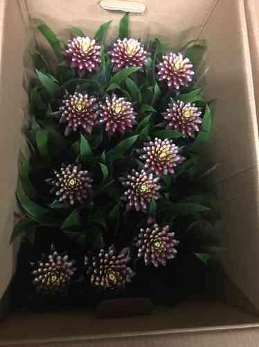 Les fleurs livrées par les pépinéristes vont être disposées dans les serres.