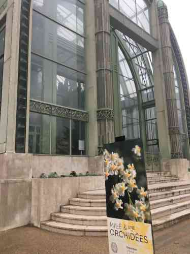 L'exposition« Mille & une orchidées» se tient jusqu'au 2mars2020.