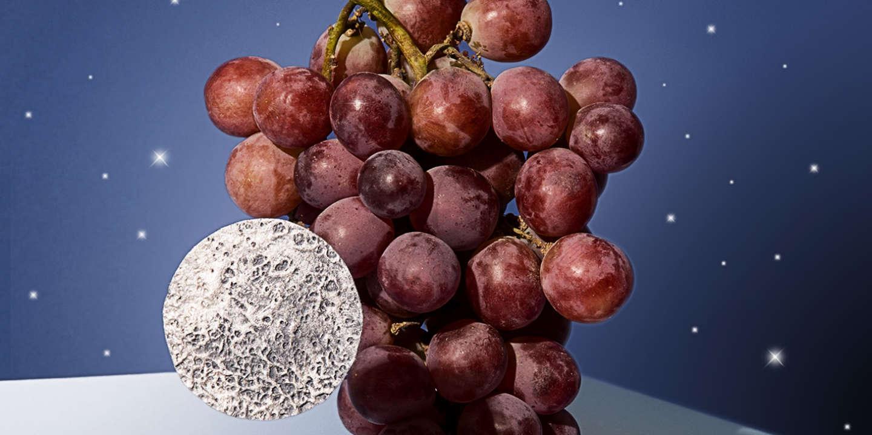 Vin : la biodynamie ou l'ivresse des convertis