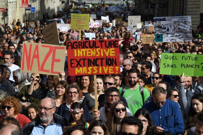 Des manifestants brandissent des pancartes indiquant« Agriculture intensive = extinction massive»alors qu'ils participent à la« Marche du Siècle» à Bordeaux, le 16 mars 2019.