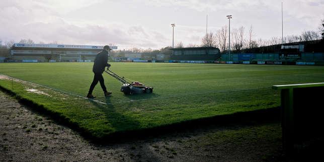 Football et écologie: du régime végan à la pelouse bio, la révolution verte des Forest Green Rovers