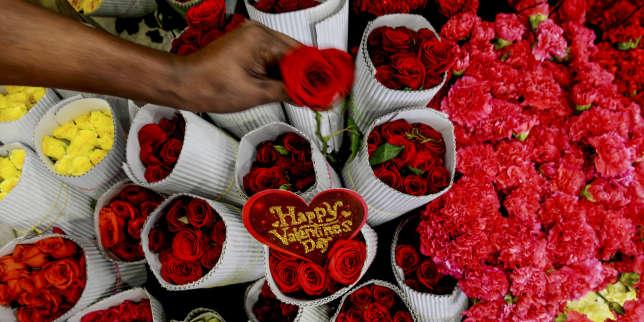 Des roses à la Saint-Valentin? Un cadeau empoisonné