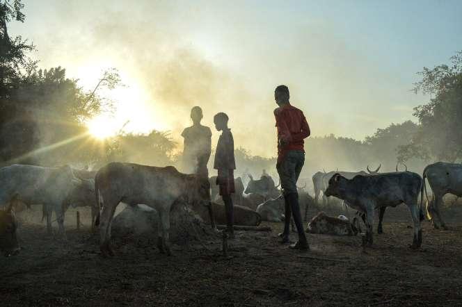 De jeunes éleveurs et leur troupeau, à Udier (Soudan du Sud), le 8 mars 2019.