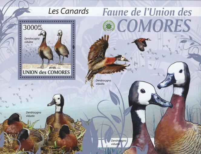 Bloc timbré des Comores offert en cadeau avec le dernier numéro d'« Atout timbres».