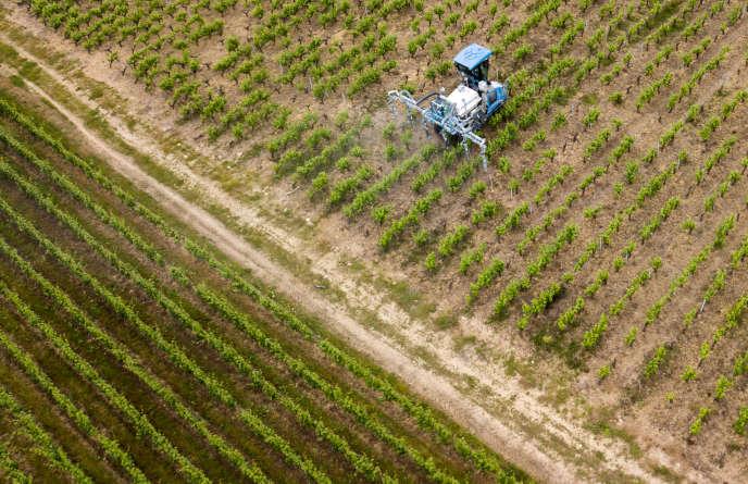 L'Union européenne sous pression pour autoriser des pesticides interdits dans les produits importés