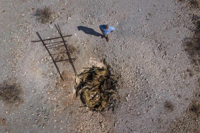 Burger Schoeman, directeur du Thuru Lodge, en Afrique du Sud, regarde la fosse commune où sont déversés les cadavres des animaux victimes de la sécheresse, le 15janvier 2020.