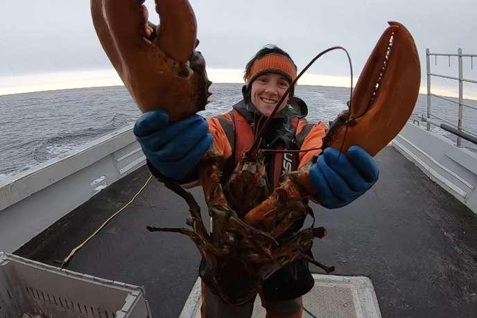 La pêche au homard est«la plus lucrative au monde » :70000 tonnes de homards pêchés rapportent 800 millions de dollars.