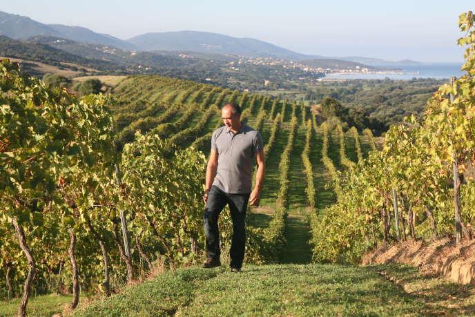Gilles Seroin dans son domaine de Sant Armettu, en Corse-du-Sud.