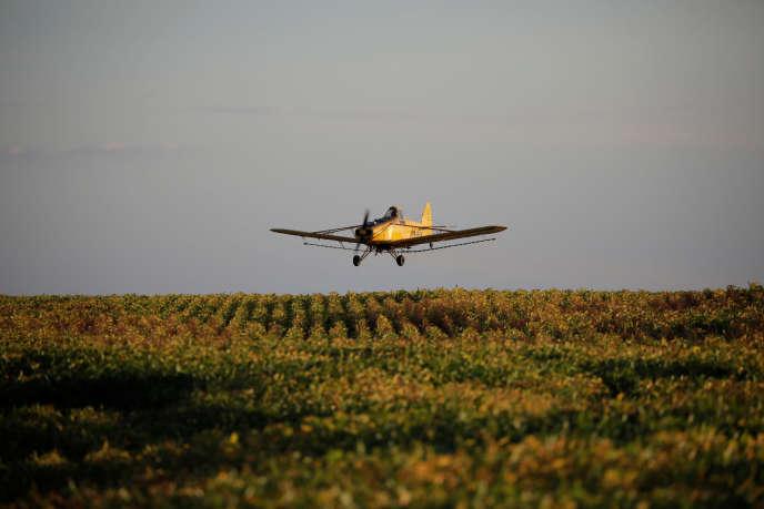 Un avion pulvérise un champ de soja près de Palmeirante, au Brésil, en février 2018.